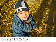 Мальчик среди осенних листьев. Стоковое фото, фотограф Kribli-Krabli / Фотобанк Лори