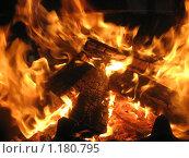 Купить «Жар», фото № 1180795, снято 9 мая 2009 г. (c) Любецкая Марина / Фотобанк Лори