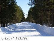 Дорога ... Стоковое фото, фотограф Виталий Кожин / Фотобанк Лори