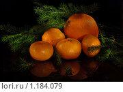 Купить «Мандарины и апельсин на черном фоне», фото № 1184079, снято 13 ноября 2019 г. (c) Афанасьева Ольга / Фотобанк Лори
