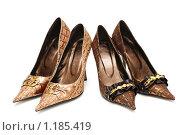 Женские туфли. Стоковое фото, фотограф Elnur / Фотобанк Лори