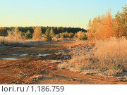Осенняя дорога. Стоковое фото, фотограф Аврам / Фотобанк Лори