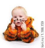 Купить «Девочка - тигренок», фото № 1188159, снято 2 ноября 2009 г. (c) Ирина Солошенко / Фотобанк Лори