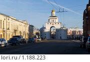 Купить «Золотые ворота. Владимир», фото № 1188223, снято 3 января 2008 г. (c) Ann Perova / Фотобанк Лори