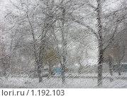 Непогода. Стоковое фото, фотограф Галина Бушкова / Фотобанк Лори