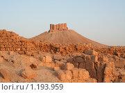 Арабская крепость рядом с пальмирой, Сирия (2009 год). Стоковое фото, фотограф Владимир Ионов / Фотобанк Лори