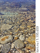 Купить «Морские прибрежные камни в прозрачной воде», фото № 1195659, снято 7 сентября 2009 г. (c) Владимир Сергеев / Фотобанк Лори