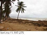 Купить «Вид пляжа г. Нячанг (Вьетнам) после тайфуна Миринаэ.», фото № 1197275, снято 5 ноября 2009 г. (c) Сергей Пономарев / Фотобанк Лори