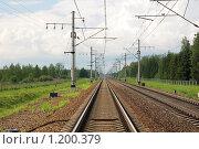 Купить «Железная дорога. Рельсы.», фото № 1200379, снято 25 июля 2009 г. (c) Катыкин Сергей / Фотобанк Лори