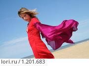 Девушка подросток на океанском берегу с красным шарфом, развевающимся на ветру. Стоковое фото, фотограф Димитрий Сухов / Фотобанк Лори
