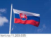 Флаг Словакии. Стоковое фото, фотограф Петр Кириллов / Фотобанк Лори