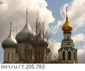 Купола Софийского собора (Вологда) (2009 год). Редакционное фото, фотограф Екатерина Туркина / Фотобанк Лори