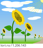 Купить «Подсолнечник», иллюстрация № 1206143 (c) Юрий Борисенко / Фотобанк Лори