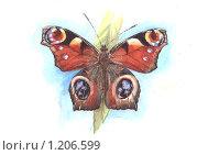 Завораживающий павлиний глаз. Стоковая иллюстрация, иллюстратор Мария Веселова / Фотобанк Лори