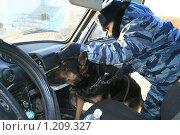 Купить «Досмотр автомобиля на наличие наркотиков с помощью служебной собаки», фото № 1209327, снято 13 октября 2009 г. (c) Алена Потапова / Фотобанк Лори