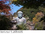 Купить «Статуя Будды в Камакура», фото № 1209635, снято 14 ноября 2007 г. (c) Serg Zastavkin / Фотобанк Лори