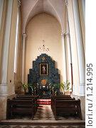 Купить «Внутреннее убранство Кафедрального Собора Непорочного Зачатия Пресвятой Девы Марии. Москва», эксклюзивное фото № 1214995, снято 27 апреля 2009 г. (c) lana1501 / Фотобанк Лори