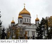 Купить «Храм Христа Спасителя», фото № 1217319, снято 14 октября 2008 г. (c) Татьяна Богатова / Фотобанк Лори