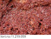 Купить «Красный камень с песчинками», фото № 1219059, снято 30 июля 2008 г. (c) Маргарита Лир / Фотобанк Лори