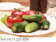 Огурцы и помидоры. Стоковое фото, фотограф Андрей Багаев / Фотобанк Лори