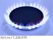 Купить «Газ», фото № 1226015, снято 11 февраля 2009 г. (c) Роман Сигаев / Фотобанк Лори