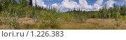 Горное болото, плато хребта Сухие Горы. Челябинская область. Стоковое фото, фотограф хлебников алексей / Фотобанк Лори