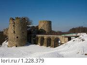 Купить «Крепость Копорье», эксклюзивное фото № 1228379, снято 8 марта 2009 г. (c) Литвяк Игорь / Фотобанк Лори