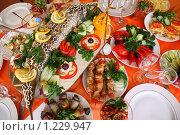Купить «Праздничное застолье», фото № 1229947, снято 25 апреля 2009 г. (c) Losevsky Pavel / Фотобанк Лори