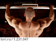 Купить «Бодибилдер», фото № 1231047, снято 12 сентября 2009 г. (c) Losevsky Pavel / Фотобанк Лори