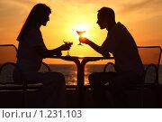 Купить «Силуэты женщины и мужчины, сидящих за столом», фото № 1231103, снято 7 июля 2009 г. (c) Losevsky Pavel / Фотобанк Лори