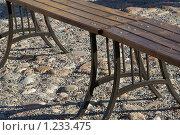 Купить «Скамейка в парке Петропавловской крепости», фото № 1233475, снято 24 мая 2009 г. (c) Оксана Кацен / Фотобанк Лори