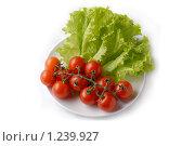 Купить «Помидоры и салат на тарелке», фото № 1239927, снято 24 октября 2009 г. (c) Марина Коробанова / Фотобанк Лори