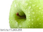 Яблоко. Стоковое фото, фотограф Суров Антон / Фотобанк Лори