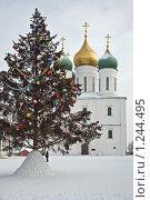 Купить «Нарядная елка», фото № 1244495, снято 5 января 2009 г. (c) Parmenov Pavel / Фотобанк Лори