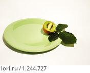 Купить «Киви на тарелке», фото № 1244727, снято 20 ноября 2009 г. (c) Иванова Виктория / Фотобанк Лори