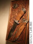 "Купить «Нож - ""Князь Гвидон""», фото № 1245983, снято 25 ноября 2009 г. (c) Юля Волкова / Фотобанк Лори"