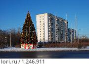Купить «Новогодняя елка в Гольяново», эксклюзивное фото № 1246911, снято 13 января 2009 г. (c) lana1501 / Фотобанк Лори
