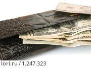Купить «Кошелек с долларовыми купюрами», фото № 1247323, снято 3 ноября 2009 г. (c) Игорь Соколов / Фотобанк Лори