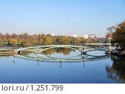 Мост в Царицыно (2009 год). Редакционное фото, фотограф Оксана Шагова / Фотобанк Лори