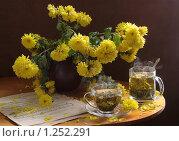 Купить «Осенний букет из хризантем и китайский зеленый чай», фото № 1252291, снято 19 июня 2019 г. (c) Марина Володько / Фотобанк Лори