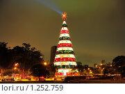Рождественская ель. Бразилия, Сан Пауло (2008 год). Редакционное фото, фотограф Оксана Sk / Фотобанк Лори