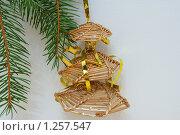 Купить «Елка на елке», фото № 1257547, снято 1 декабря 2009 г. (c) Качанов Владимир / Фотобанк Лори