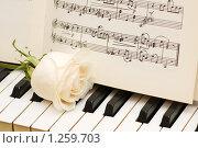 Купить «Белая роза и ноты на пианино», фото № 1259703, снято 10 марта 2008 г. (c) Elnur / Фотобанк Лори