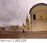Петропавловская крепость (2009 год). Стоковое фото, фотограф Бекасова Ирина / Фотобанк Лори