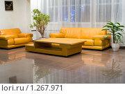 Купить «Кожаный диван в холле», фото № 1267971, снято 2 декабря 2009 г. (c) Александр Подшивалов / Фотобанк Лори