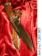 "Купить «Нож ""Князь Гвидон""», фото № 1267987, снято 26 ноября 2009 г. (c) Юля Волкова / Фотобанк Лори"