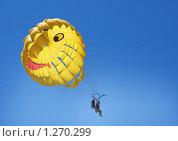 Парашют. Стоковое фото, фотограф Сергей Кудряков / Фотобанк Лори