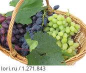 Купить «Плетеная корзинка с гроздьями винограда», фото № 1271843, снято 15 августа 2009 г. (c) Ольга Молчанова / Фотобанк Лори