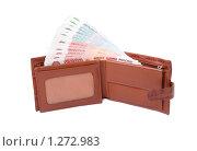 Купить «Бумажные купюры в портмоне», эксклюзивное фото № 1272983, снято 8 декабря 2009 г. (c) Мария Зубарева / Фотобанк Лори
