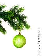 Купить «Новогоднее украшение висящее на ветке», фото № 1273555, снято 24 августа 2008 г. (c) Elnur / Фотобанк Лори